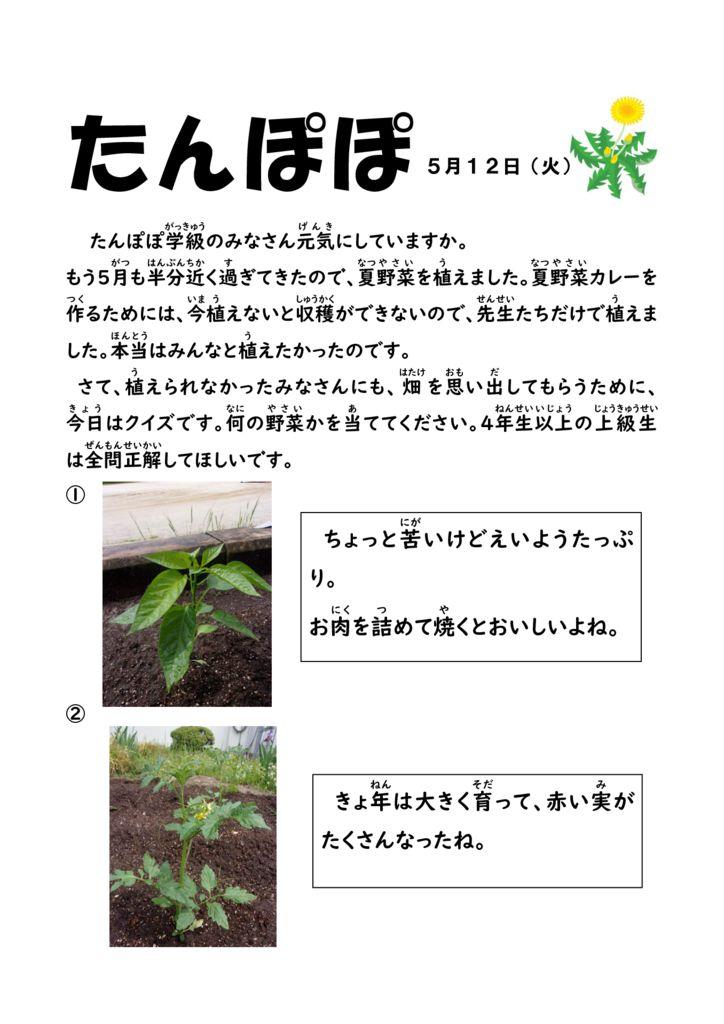 畑に野菜をうえました。(たんぽぽ学級)のサムネイル